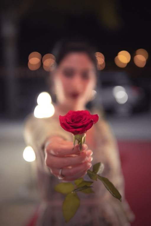 hopeless romantic offering a rose